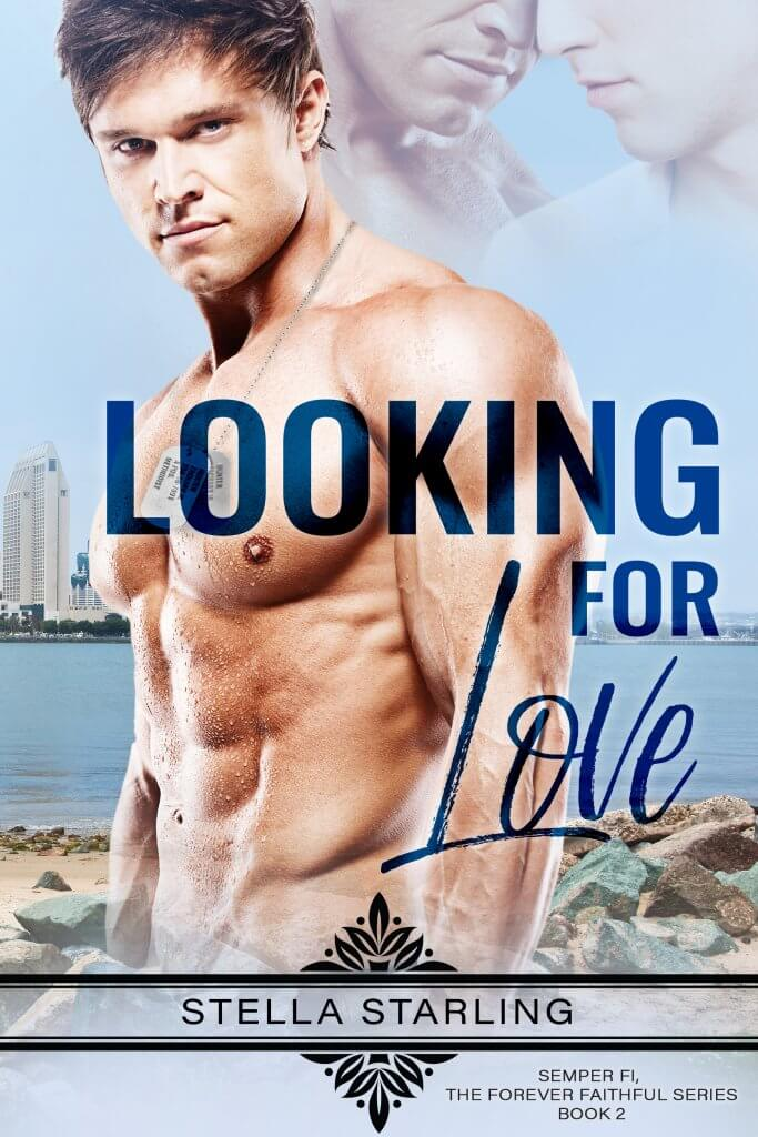 Book Cover: Looking for Love